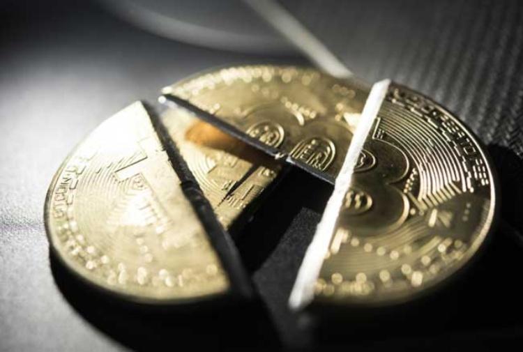 il dimezzamento bitcoin)
